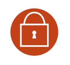 icon 4 securitate